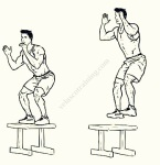 Box Jump velascotraining